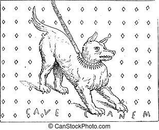Attention to the dog, vintage engraving.