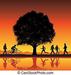 attività esterna, con, albero