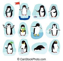 attività, set, quotidiano, pinguini, manifesti, cartone animato