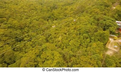 Attraction zipline in the jungle Bohol, Philippines. -...