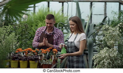 Attractive couple work in greenhouse. Woman gardener in...