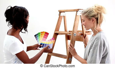 Attractive friends wondering what colour choose for the wall...