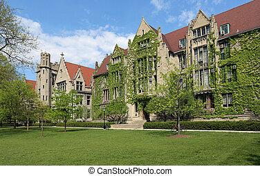 Attractive University Campus with ivy clad halls