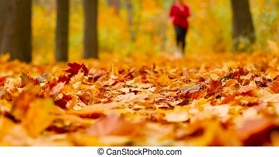Attractive woman athlete wearing stylish red sport clothing and grey sneakers running walking in autumn forest. Girl doing cardio in the autumn forest of a city park.