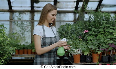 Attractive woman gardener in apron watering plants and...
