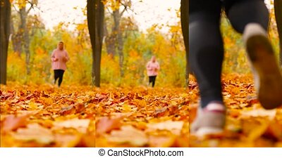 Young attractive woman in sportswear and sneakers runs in the autumn park. Beautiful autumn maple leaves view. Sports and healthy lifestyle concept.