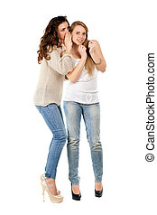 Attractive young gossipy women posing in casual clothing. Isolated on white