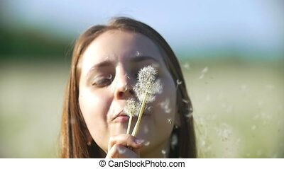 Attractive young woman blowing dandelions in a summer field,...