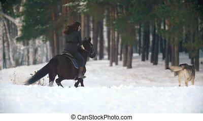 Attractive young woman riding a black horse through the snow...