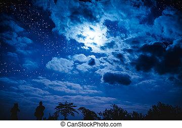 attraente, di, strabiliante, blu, scuro, cielo notte, con, stelle, e, nuvoloso, sopra, campo, di, alberi.