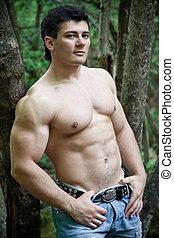 attraente, muscolare, uomo