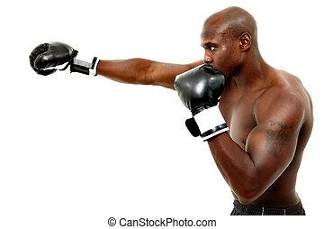 attraktiv, svärta manlign, boxare, över, vit