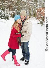 attraverso, coppia, terreno boscoso, camminare, nevoso