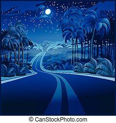 attraverso, giungla, strada, notte