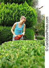 attrezzo, donna, arbusto, potatura, giardino