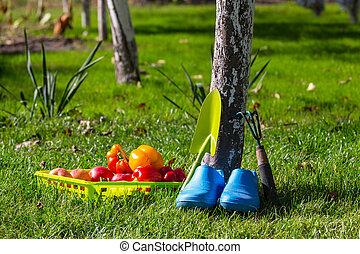 attrezzo giardino