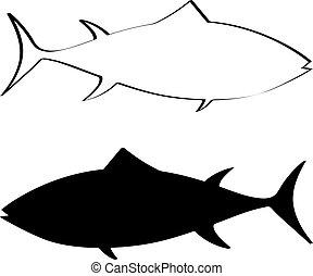 atum, silueta, peixe