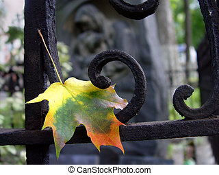Atumn leaf at the cemetery