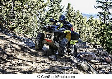 ATV Rider on Mountain Trail - ATV rider concentrates...