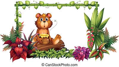 au-dessus, jardin, ours, coffre
