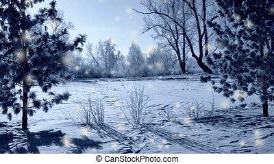 aube, parc, chute neige