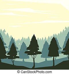 aube, paysage, fond, forêt, coloré
