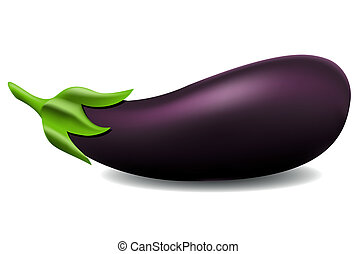 aubergine, vector, illustratie