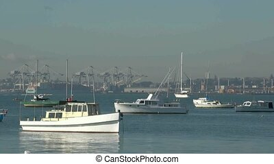 Auckland harbour and commercial wha