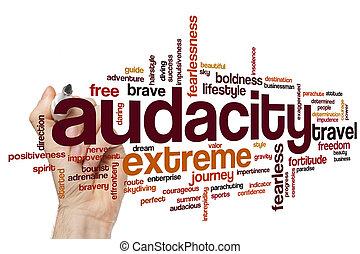 Audacity word cloud concept