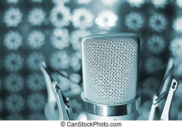 Audio recording vocal studio voice microphone with anti...