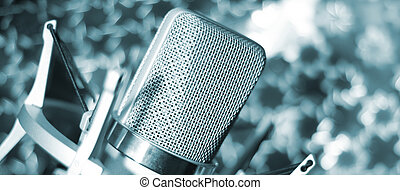 Audio recording vocal studio voice microphone with anti...