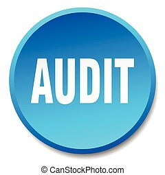 audit blue round flat isolated push button