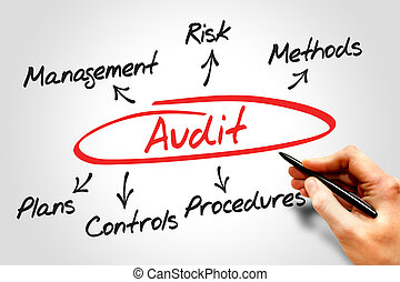 Audit diagram process, business concept