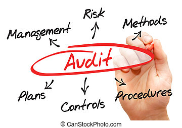 Audit diagram process, business concept
