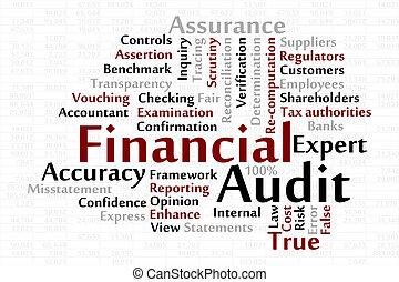 audit, financier