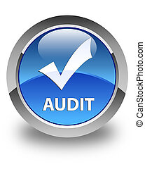 Audit (validate icon) glossy blue round button