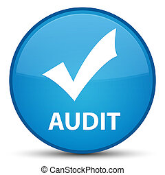 Audit (validate icon) special cyan blue round button