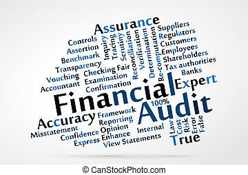 auditoría, financiero