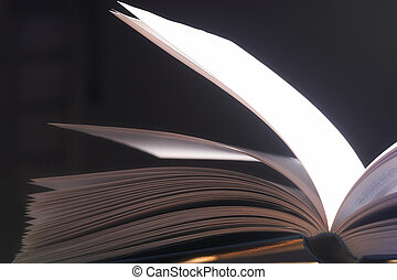 aufgeschlagene, seiten-, pitched, 頁