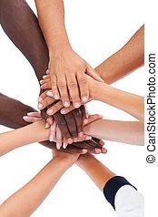 aufstapelnde hände, gruppieren zusammen, leute
