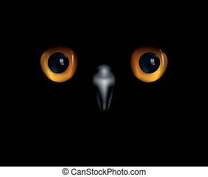 augenpaar, owl., gelber , hintergrund., schwarz, schnabel, ...