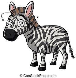 augenpaar, schwindlig, zebra