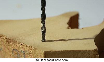 Auger bit drilling wood. close-up