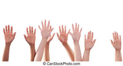 augmentation, beaucoup, haut haut, fond, mains, blanc