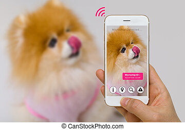 Augmented Reality of Pet Microchip App on Smartphone Screen Concept