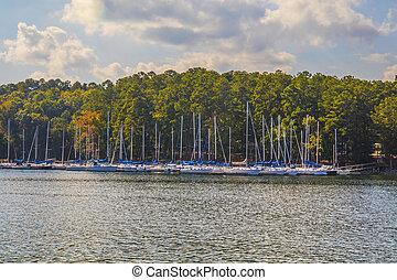 View of boats parked at a marina at the lake