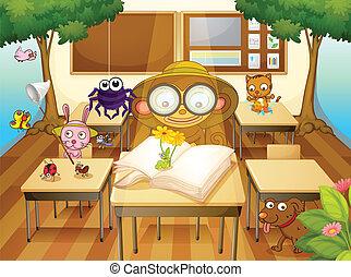 aula, animali