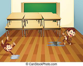 aula, scimmie, pulizia