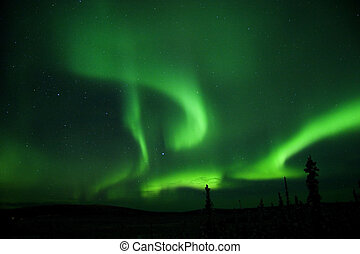 Aurora all over the sky, cold winter night in Alaska