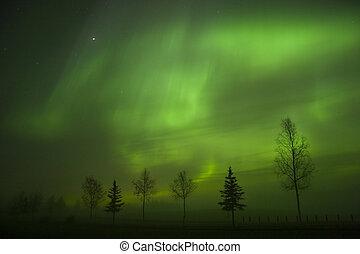 Aurora Borealis - Aurora borealis